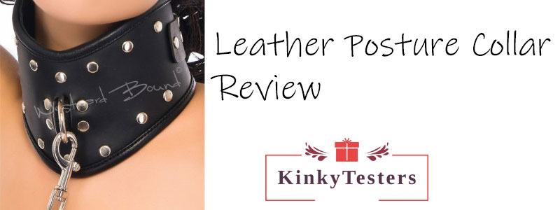 Leather Posture Collar Lead review